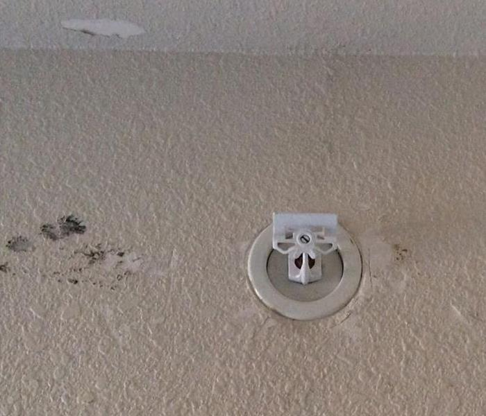 Fire Sprinkler vs Room in Tulsa